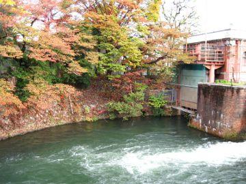 冷泉通から夷川水力発電所付近の紅葉の様子